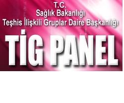 TİG Panel