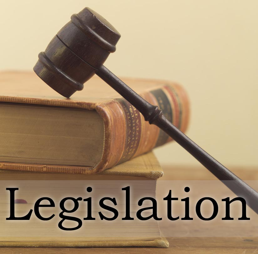 Main Regulation