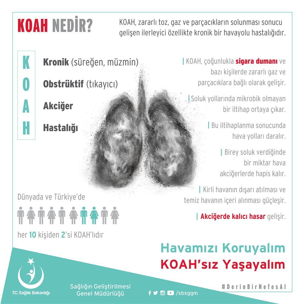 koah info1.jpg