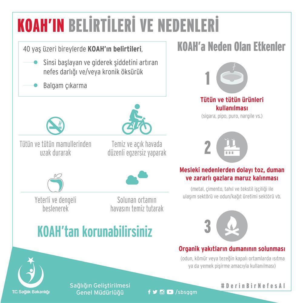 koah info2.jpg