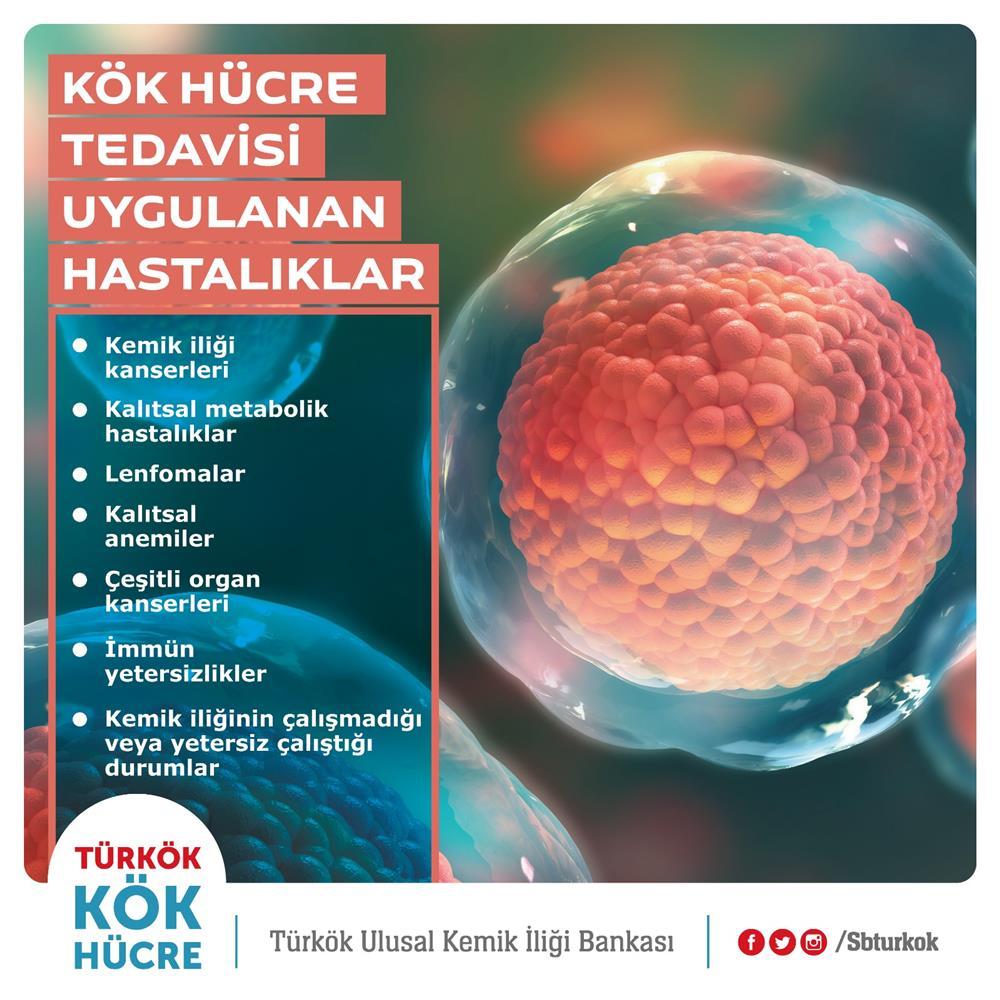 Kök Hücre Tedavisi Yapılan Hastalıklar