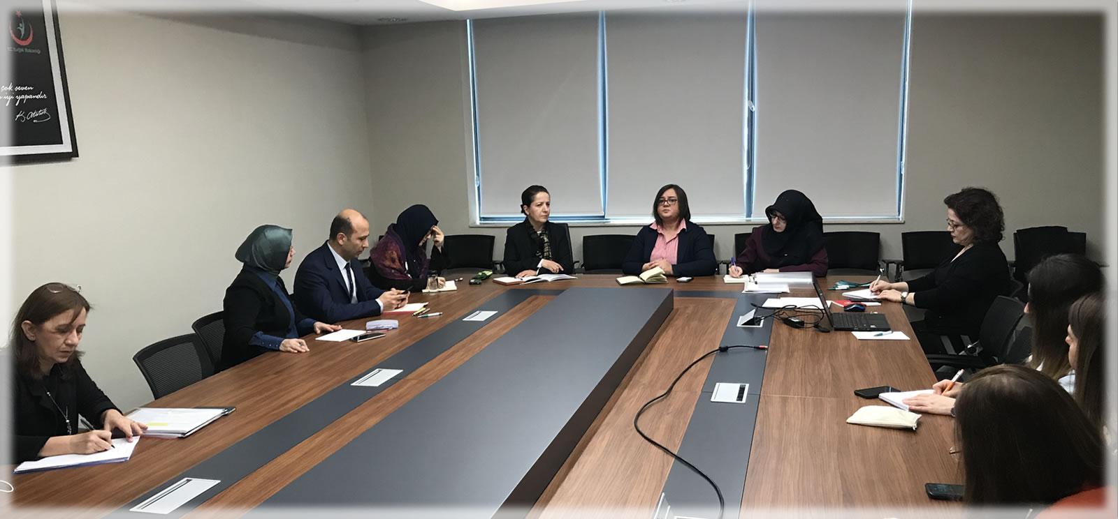 Kadına Yönelik Şiddetle Mücadelede İş Birliği Toplantısı